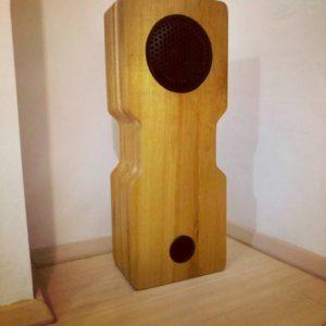 pentr o boxa din lemn masiv cea mai potrivita culoare pentru difuzor, grilajul protector si tubul pentru basul reflex este culoarea neagra